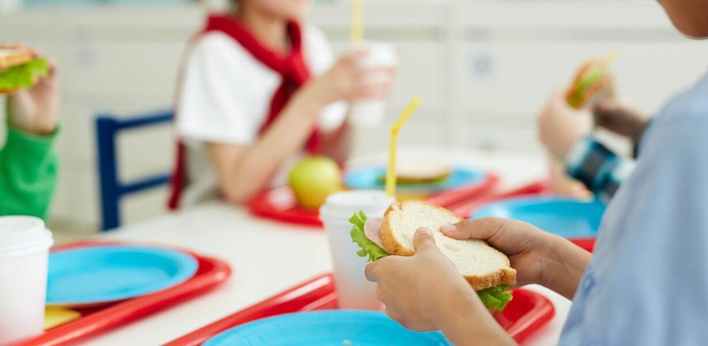 В Госдуме предложили заменить школьные завтраки денежными сертификатами